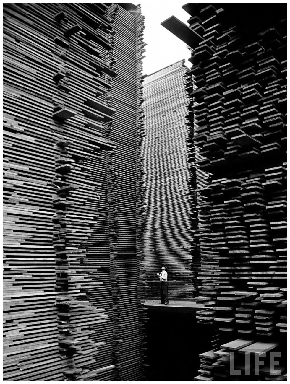 seattle hardwood lumber