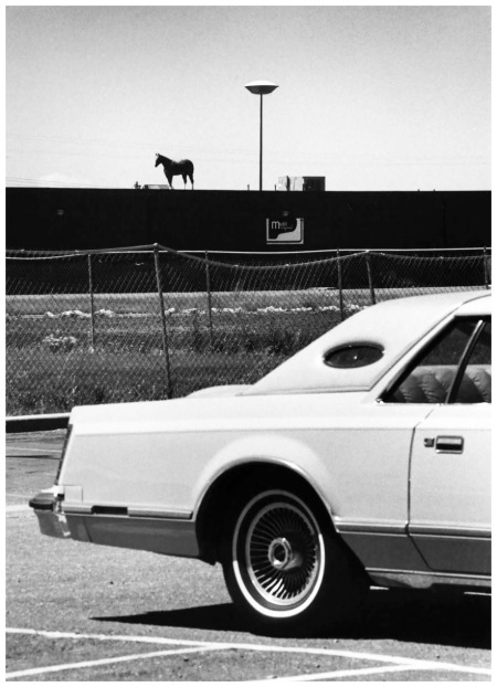 photo by André Kertész Fargo, New Dakota June 17th, 1978