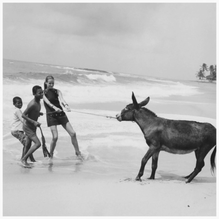 1968 Photo Franco Rubartelli On the Brazilian beach of Itapoa, Veruschka pulls a donkey towards the ocean surf with the help of two young Brazillian boys; Veruschka wears a dress by Erika Elias for Charlie's Girls
