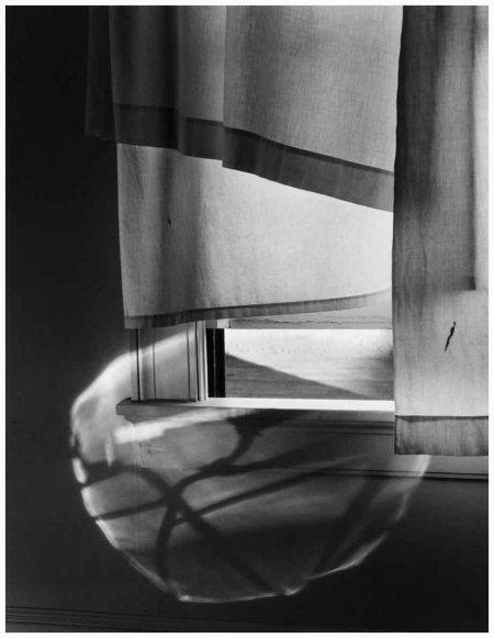 Photo Minor White American 1908-1976 Windowsill daydreaming Rochester, New York, July 1958