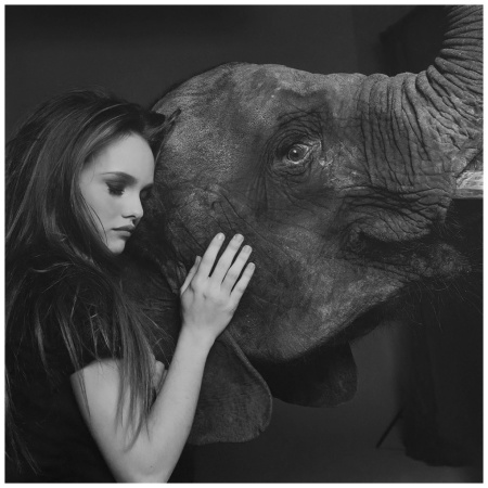 Vanessa Parais With Elephant, 1991
