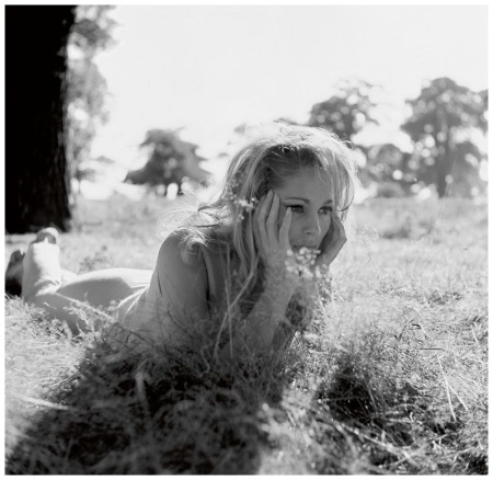 Ursula Andress, 1965 Photo By Terry O'Neill