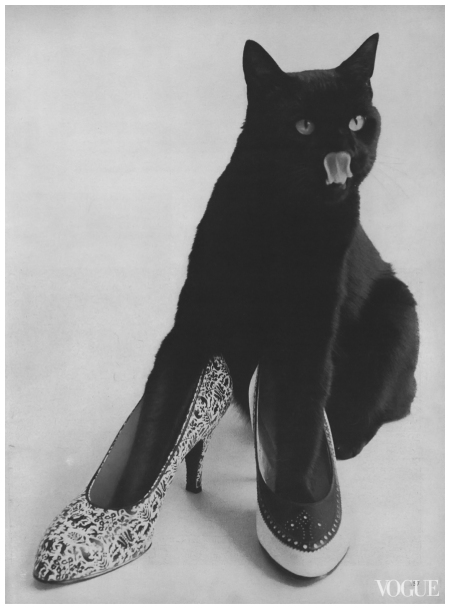 Photo Leombruno-Bodi, Vogue, December 1, 1955