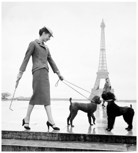 Model in Dior Suit Walking Poodles in Paris nd Louise Dahl-Wolfe Archive b