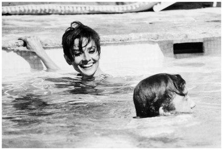 Actress Audrey Hepburn and actor Albert Finney 1966 Corbis