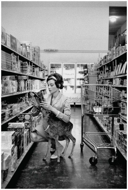 Photo Bob Willoughby  Audrey fa shopping in un supermercato Gelson a Beverly Hills