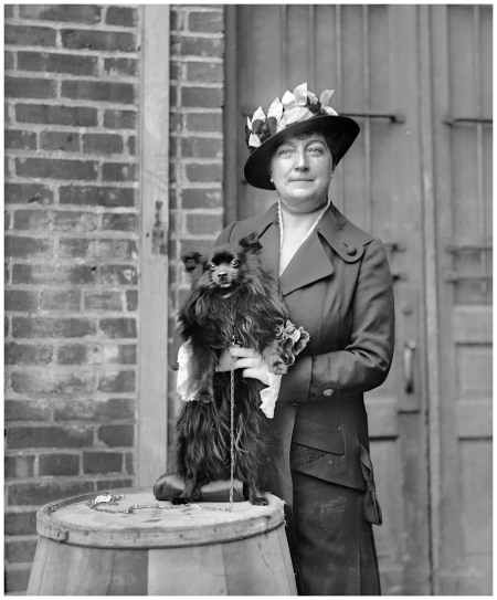 1915. %22Dog show. Mrs. Henry C. Corbin.%22 Another entry from H&E's series showing matrons, misses and their mutts at the Washington Kennel Club dog show of April 1915. Harris & Ewing Collection