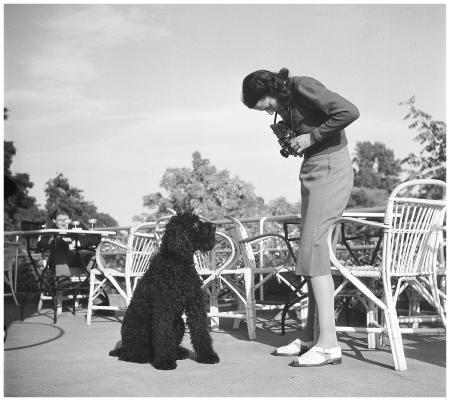 1946, Maria Austria fotografeert een hond Photo Henk Jonker