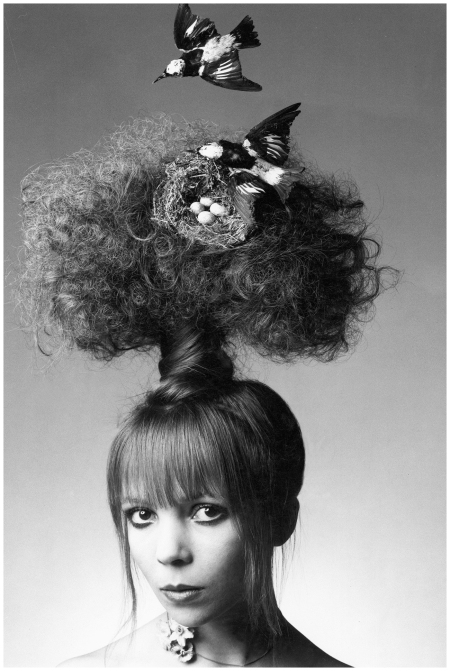 Bird On Nest On Tree Penelope Tree by photographer Clive Arrowsmith for the June 1970 edition of Vogue Photo Clive Arrowsmith