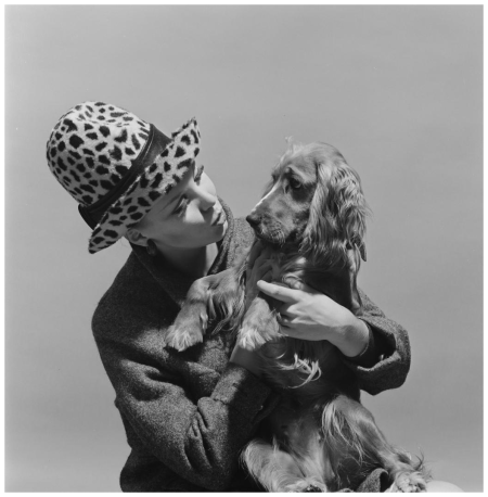 Portrait of Corine Rottschaefer with panther hat and Irish setter (flop) 1960's Photo Hans Dukkers
