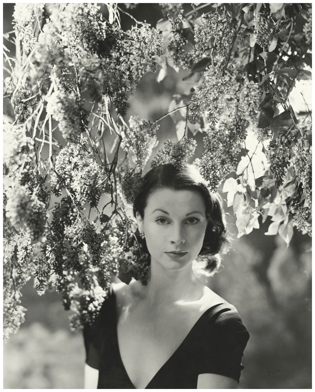Mona Knox