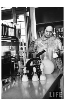 Helena Rubenstein working in the perfume blending lab