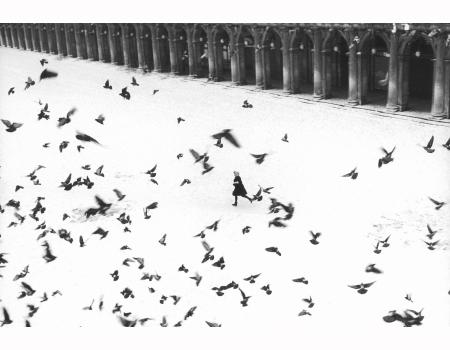 Venezia 1960 © Gianni Berengo Garndin